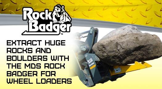 rock badger